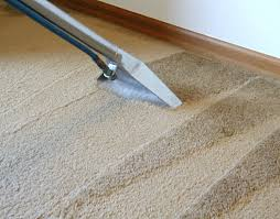 Do It Yourself Tips For Cleaning Your Carpets Carpetkings